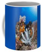 Tube Sponge On Coral Reef In Raja Coffee Mug