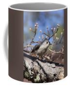 Tufted Titmouse - Always Alert Coffee Mug
