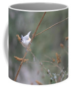 Tufted Titmouse 2 Coffee Mug