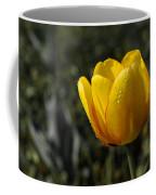 Tulip Drops Coffee Mug