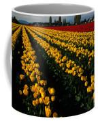 Tulip Fields Forever Coffee Mug