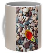 Tulip Petal And Wet Stones Coffee Mug
