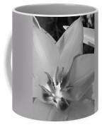 Tulip Up Close Coffee Mug
