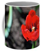 Tulips Blooming Coffee Mug