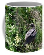 Black Vulture - Buzzard Coffee Mug