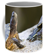 Turtle Conversation Coffee Mug