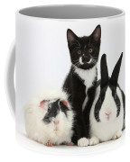 Tuxedo Kitten With Black Dutch Rabbit Coffee Mug