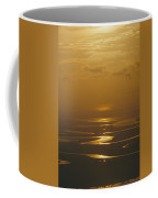 Twilight Over A Wetland With Meandering Coffee Mug