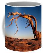 Twilight View Of A Jeffrey Pine Tree Coffee Mug