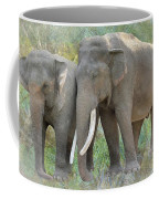 Twin Elephants Coffee Mug