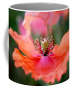 Twirling Floral Skirt Coffee Mug