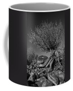 Twisted Beauty - Bw Coffee Mug by Christopher Holmes