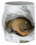Twisted Fish Coffee Mug