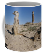 Two Adult Meerkats Suricata Suricatta Coffee Mug
