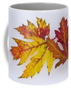 Two Autumn Maple Leaves  Coffee Mug by James BO  Insogna