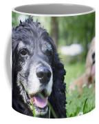 Two Cocker Spaniel Dogs Coffee Mug