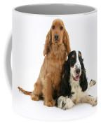 Two Cocker Spaniels Coffee Mug