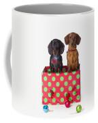 Two Dachshund Puppies Inside A Polka Coffee Mug