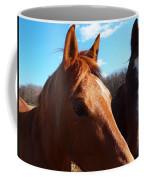 Two Horses In Love Coffee Mug