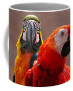 Two Parrots Closeup Coffee Mug