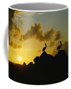 Two Pelicans Perched On Rocks Coffee Mug