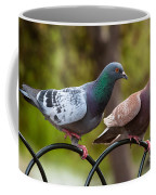 Two Pigeons Coffee Mug