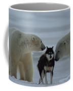 Two Polar Bears Ursus Maritimus Sniff Coffee Mug by Norbert Rosing