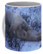 Two Polar Bears Wrestle In The Snow Coffee Mug
