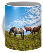 Two Quarters And An Appaloosa Coffee Mug
