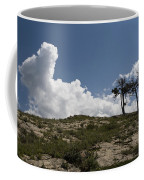 Two Trees Of Many Glacier Coffee Mug