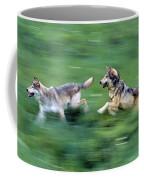 Two Wolves Running Through Meadow Coffee Mug