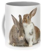 Two Young Rabbits Coffee Mug