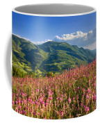 Umbria Coffee Mug