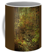 Unami Creek Feeder Stream In Autumn - Green Lane Pa Coffee Mug