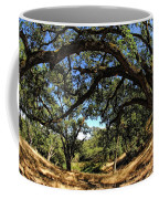 Under The Oak Canopy Coffee Mug