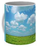 Under The Texas Sky Coffee Mug
