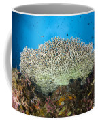 Underside Of A Table Coral, Papua New Coffee Mug by Steve Jones