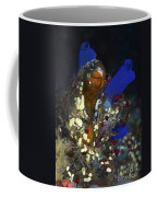Underwater Bouquet Formed By Cluster Coffee Mug