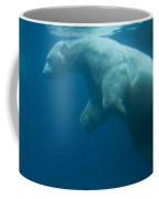 Underwater View Of A Polar Swimming Coffee Mug