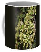 Unripened Inkberries Coffee Mug