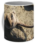Unusual Driftwood Coffee Mug