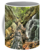 Upper Cascade Hidden Falls Coffee Mug