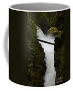 Upper Qualicum Falls 2 Coffee Mug
