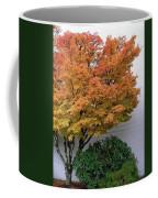 Urban Fall  Coffee Mug