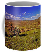 Valley At Fossil Butte Nm Coffee Mug
