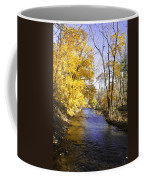 Valley Forge Creek In Autumn Coffee Mug