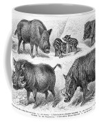 Varieties Of Swine Coffee Mug