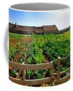 Vegetable Farm Coffee Mug by Carlos Caetano