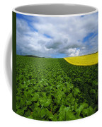 Vegetables, Cabbages Coffee Mug