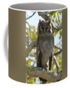 Verreauxs Eagle Owl, Bubo Lacteus, Or Coffee Mug by Paul Sutherland